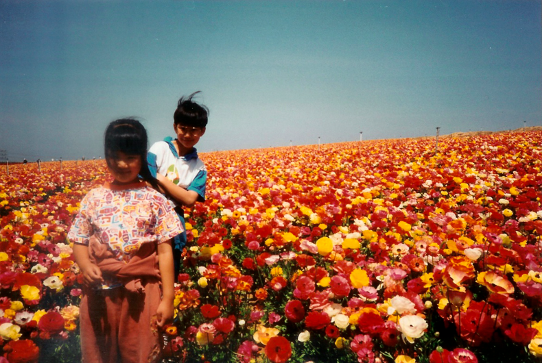 two children standing in a field of poppies of many colors